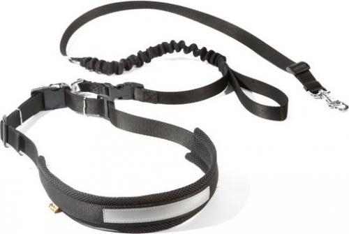 Dingo komplet do biegania, rozmiar s/ m pas: 2.5 x 70-130 cm, smycz: 2.0 x 120-150 cm black