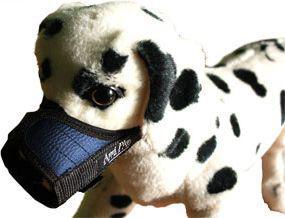 Ami Play Kaganiec   XS (N1) Yorkshire Terrier 14-17 [a] x 17-28 [b] cm Niebieski