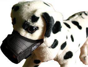Ami Play Kaganiec   XS (N1) Yorkshire Terrier 14-17 [a] x 17-28 [b] cm Czrny