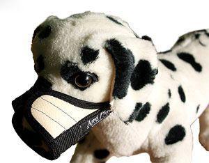 Ami Play Kaganiec   XS (N1) Yorkshire Terrier 14-17 [a] x 17-28 [b] cm Beżowy
