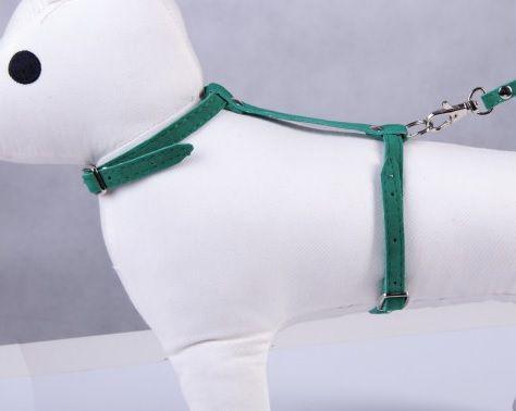 Dino Smycz dla kota z szelkami - zielony