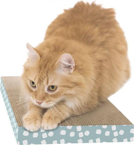 SportPet WIDE SCRATCHER