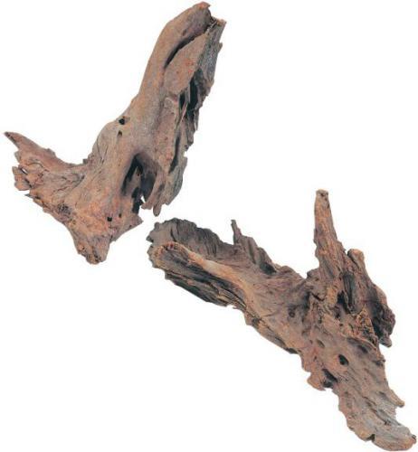 Zolux Korzeń Mangrowca 25-40 cm