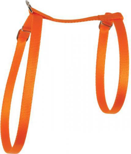 Zolux Szelki dla kota nylon 10 mm pomarańczowy