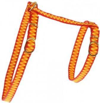 """Zolux Szelki dla kota """"Seventies"""" 10 mm pomarańczowy"""