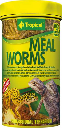 Tropical MEAL WORMS 250ml PUSZKA