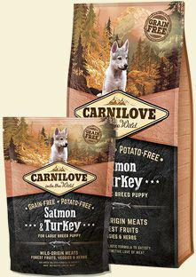 CARNILOVE Salmon & Turkey For Large Breed Puppy - 12 kg