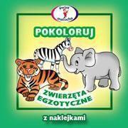 Skrzat Pokoloruj - zwierzęta egzotyczne - 32970
