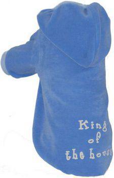 GRANDE FINALE Bluza niebieska King Of The House dla psa rozmiar 4 [B51]