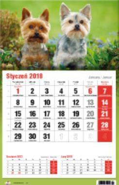 Avanti Kalendarz 2018 Jednodzielny (KTJ)