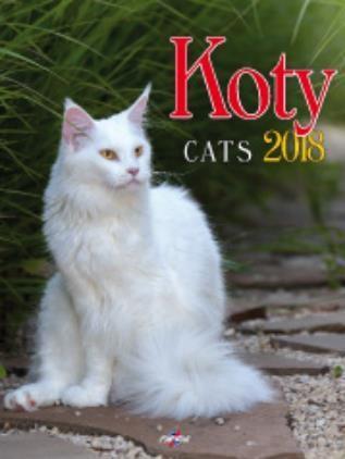 Avanti Kalendarz 2018 Koty (KSM-4)