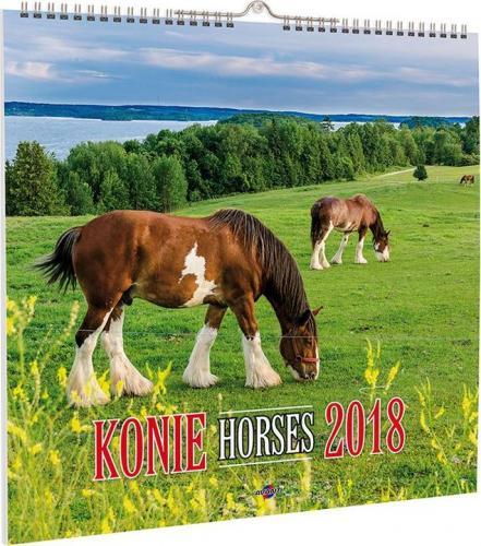 Avanti Kalendarz 2018 Konie (KD-22)