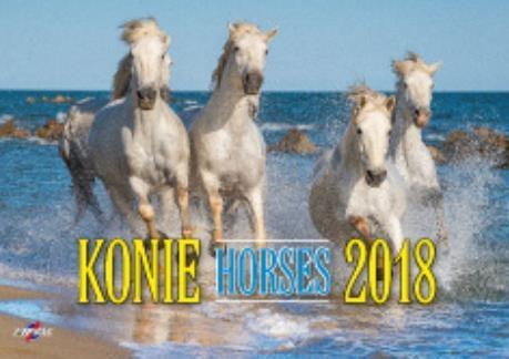 Avanti Kalendarz 2018 Konie (KA-10)