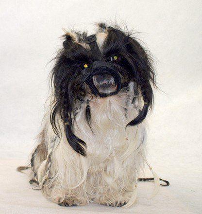 GRANDE FINALE Kaganiec dla psa pekińczyk rozmiar 1 (12-24cm)