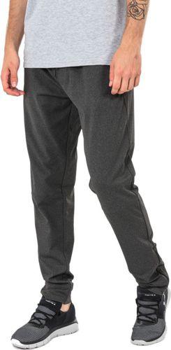4f Spodnie męskie H4Z17-SPMD004 szare r. L