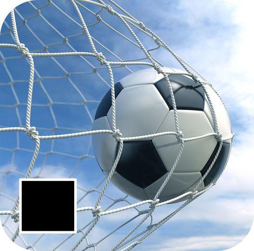 Interplastic Siatka do bramki piłkarskiej 7,32mx2,44mx4mm 200/200cm Interplastic czarny roz. uniw (01 001 0088)