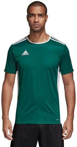 Adidas Koszulka męska Entrada 18 JSY zielona r. L (CD8358)
