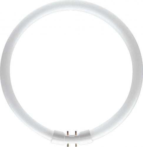 Philips Świetlówka kołowa TL5C 40W/830 2GX13 - 871150064097025