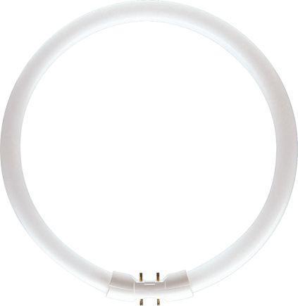 Philips Świetlówka kołowa 2GX13 60W 830    CIRCULAR TL5  (8711500642592)