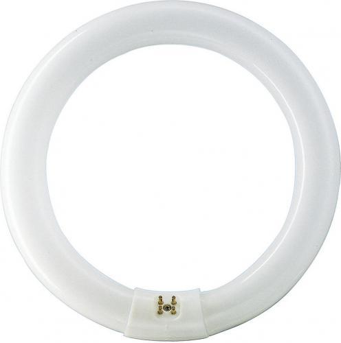 Philips Świetlówka kołowa Master TL-E 22W G10q (8727900840506)