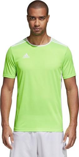 Adidas Koszulka piłkarska Entrada 18 JSY zielona r. 128 cm (CE9758)