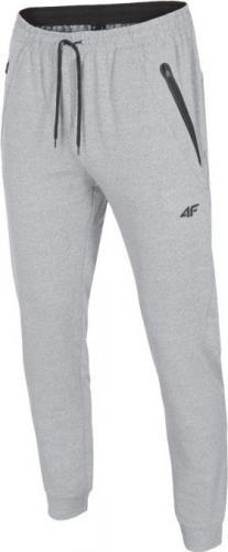 4f Spodnie męskie funkcyjne H4Z18-SPMTR001 jasnoszare r. XXL