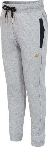 Outhorn Spodnie dziecięce HJZ18-JSPDD001 szare r. 152