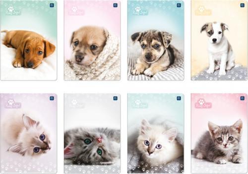 Interdruk Zeszyt A5/16k Puppy Sign