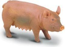 Figurka Collecta Świnia domowa macior r. M