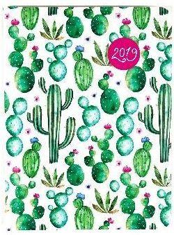 Albi Kalendarz tygodniowy B6 2019 Kaktusy ALBI