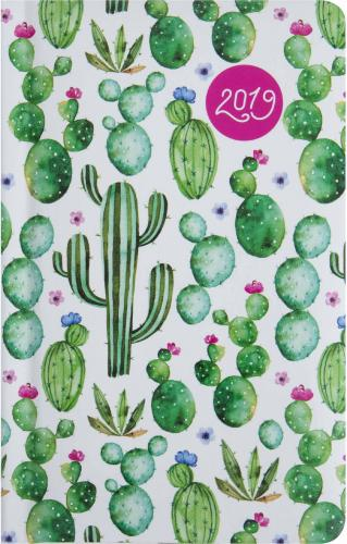 Albi Kalendarz dzienny 2019 Kaktusy ALBI