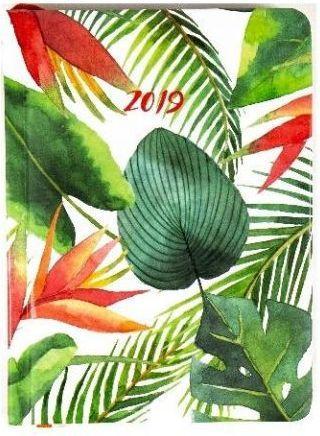 Albi Kalendarz tygodniowy 2019 Liście B6