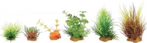 Zolux Dekoracje roślinne mix 6szt. zestaw 3 (352132)