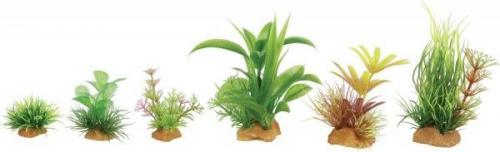 Zolux Dekoracje roślinne mix 6szt. zestaw 2 (352131)