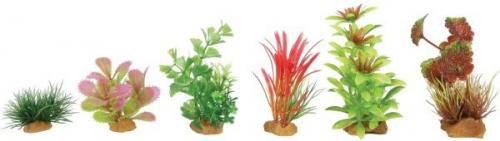 Zolux Dekoracje roślinne mix 6szt. zestaw 1 (352130)