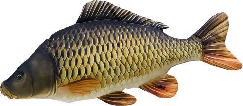 Gaby Poduszka Ryba Karp Pełnołuski 64cm