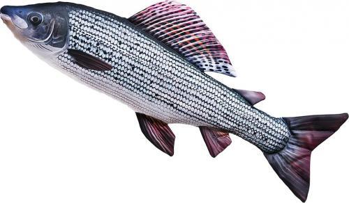 Gaby Poduszka Ryba Lipień 65cm