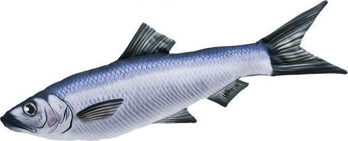 Gaby Poduszka Ryba Śledź 60cm