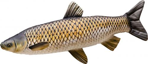 Gaby Poduszka Ryba Amur 40cm