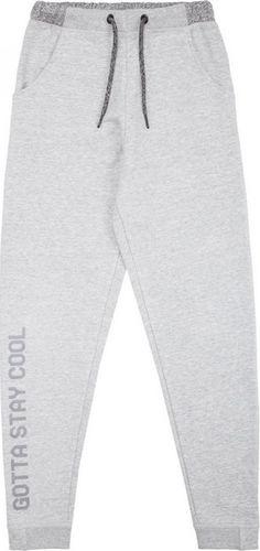 4f Spodnie dresowe dziewczęce JSPDD200 szare r. 134