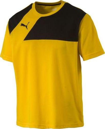 Puma Koszulka męska Esquadra Leisure Team Yellow-Black r. L