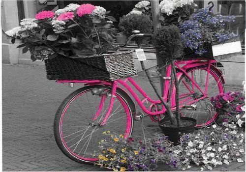 Panta Plast Koperta A4 na napę z nadrukiem Bike