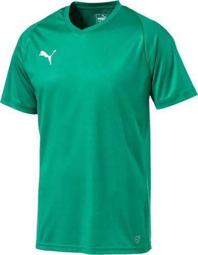Puma Koszulka męska Liga Jersey Core zielona r. S (703509 05)