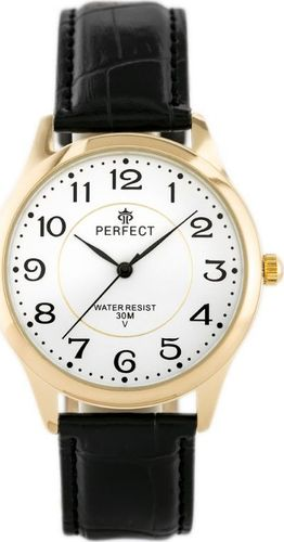 Zegarek Perfect PERFECT KLASYKA A4019-T (zp254b) uniwersalny