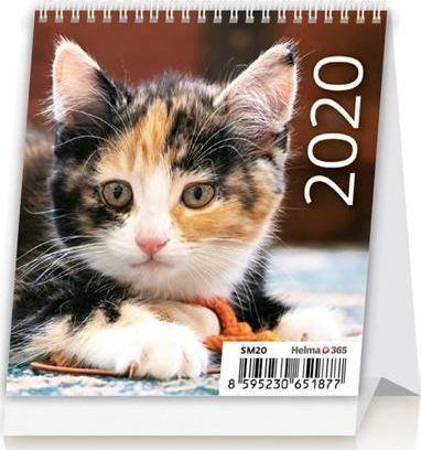 Helma Kalendarz biurkowy 2020 Mini kotki