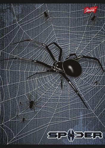 Unipap Zeszyt A5/32k Krata Spider Zielony - Unipap uniwersalny