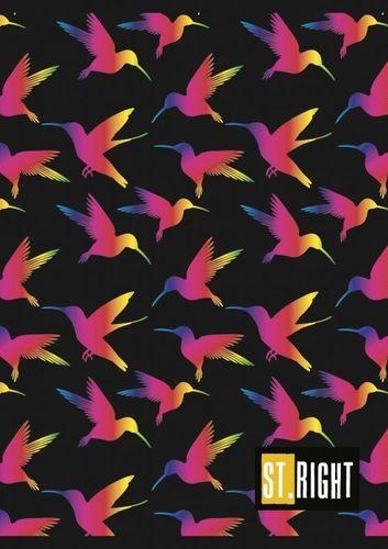 Unipap St. Right Zeszyt A5 32k kratka Kolorowe Ptaki uniwersalny