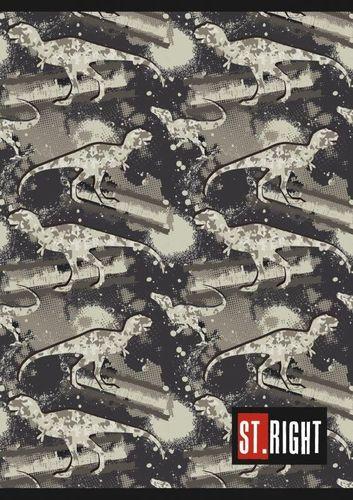 Unipap St. Right Zeszyt A5 32k kratka Dinozaury uniwersalny