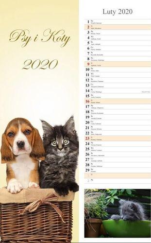 Radwan Kalendarz 2020 Psy i Koty 13 planszowy RADWAN