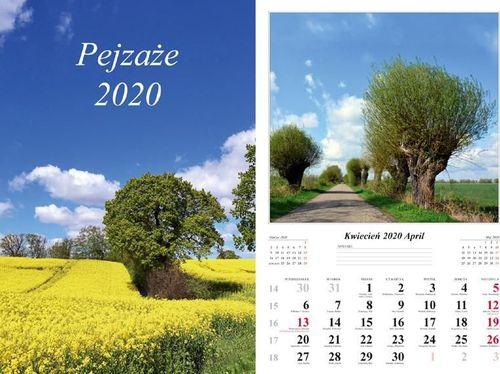 Radwan Kalendarz ścienny 2020 Pejzaże